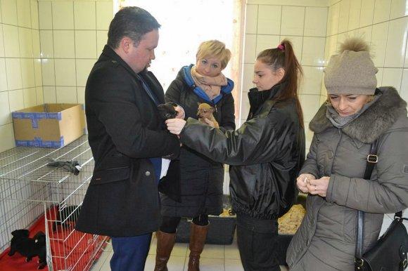 Świąteczna akcja pomocy zwierzętom. ZSR CKP...