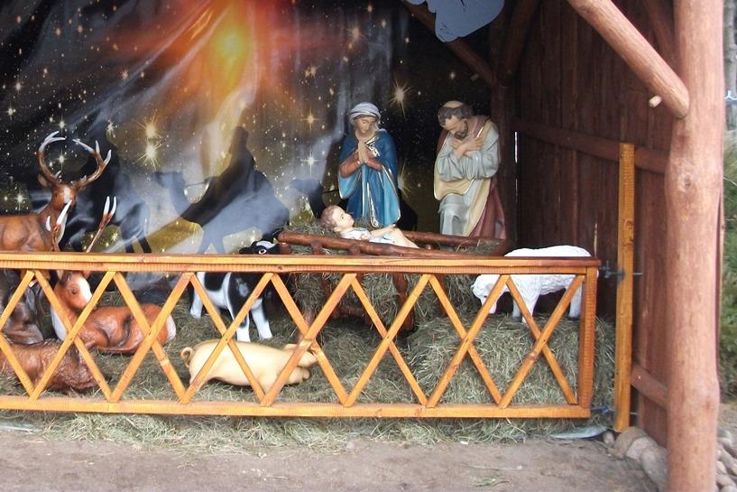 Jezus Malusieńki narodził się w Wyszynie, wśród  stajenki
