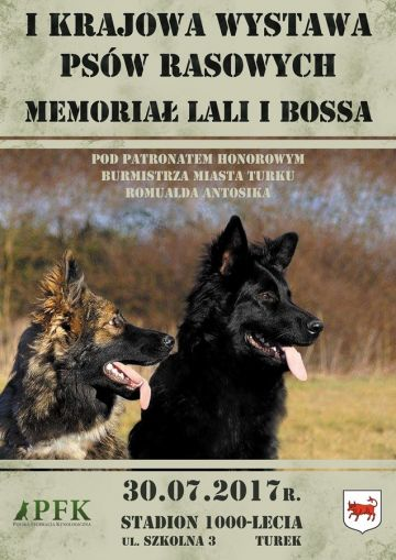I Krajowa Wystawa Psów Rasowych - Memoriał Lali...