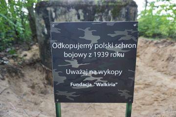 Gm. Władysławów: