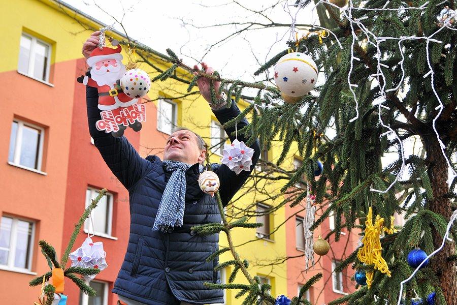 Śpiew kolęd, konkursy i wspólne ubieranie choinki na Matejki - foto: M. Derucki