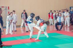 Malanów: Malanów: Wielki turniej karate