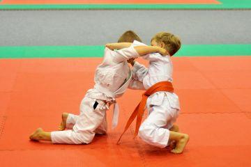 Trwa Amica Judo Cup